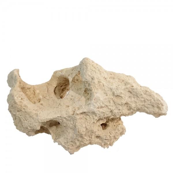Lochgestein Sansibar Rock verschiedene Größen